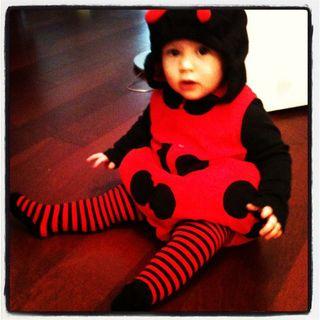 Addy_ladybug