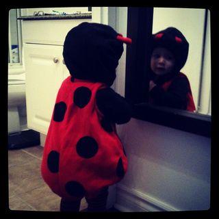 Addy_ladybug2